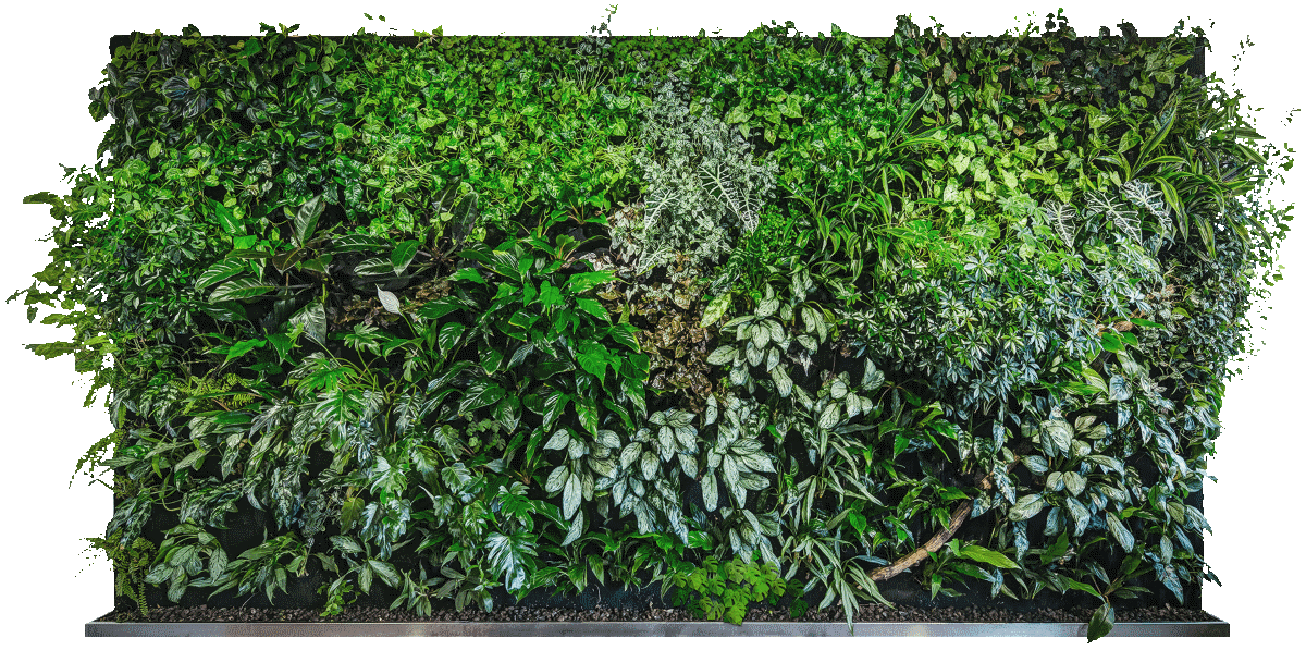 verticale tuin maken - your own vertical garden in an instant